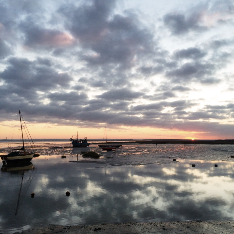 Processed with VSCOcam with s2 preset